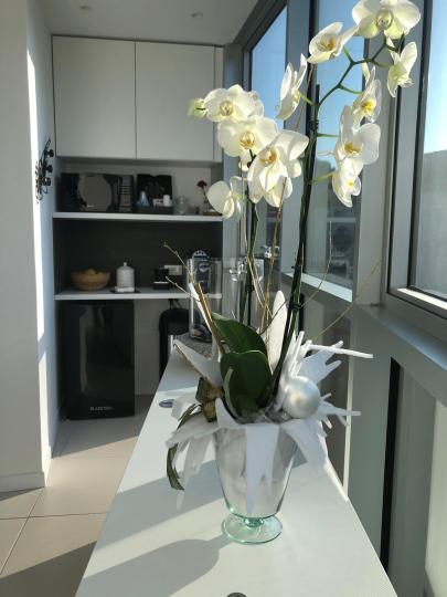 progetto_per_ufficio-interior_design-progettazione_rinnovo_locali-44